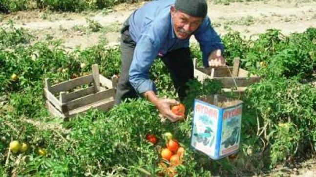 Hasan Gölyeri Kaza da Hayatını Kaybetti