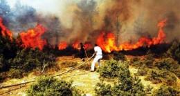 Çubuk'ta Yangın