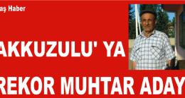 Akkuzulu'ya Rekor Aday